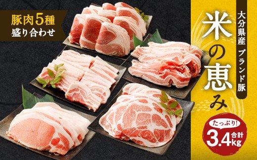 大分県産ブランド豚「米の恵み」豚肉5種 盛り合わせ 計3.4kg 豚肉