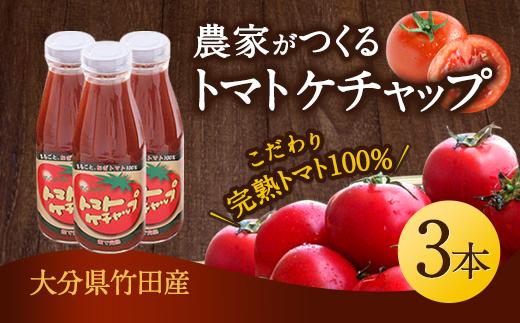 トマトケチャップ 3本セット