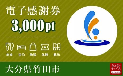 竹田市 電子感謝券 3,000ポイント【会員限定のお礼の品】