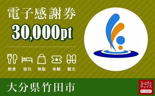 竹田市 電子感謝券 30,000ポイント【会員限定のお礼の品】