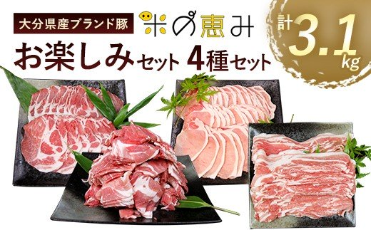 大分県産 ブランド豚 「米の恵み」お楽しみセット 計3.1kg