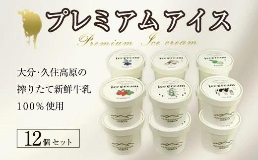 プレミアムアイスクリーム 12個入りセット(130ml×12個)