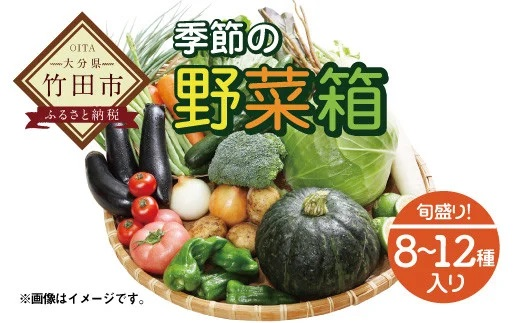 竹田市産!季節の『野菜箱』8~12種