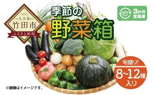竹田市産!季節の『野菜箱』3ヶ月定期便【1箱あたり:8~12種】