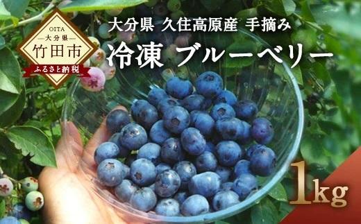 大分県久住高原産 『手摘みブルーベリー』 冷凍ブルーベリー 1kg