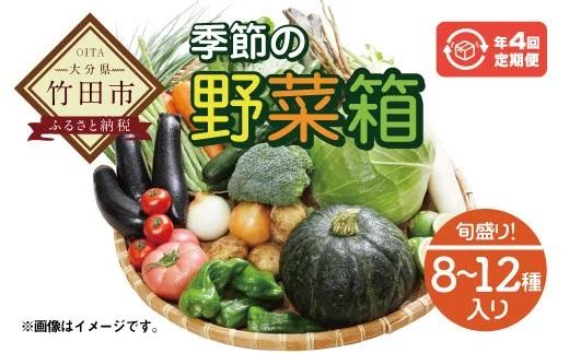 竹田市産!季節の『野菜箱』年4回 四季の定期便【1箱あたり:8~12種】