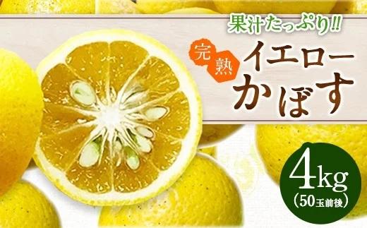 【期間限定】果汁たっぷり 完熟イエローかぼす 1箱4kg 50玉前後