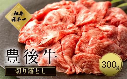 大分県竹田産 おおいた和牛 切り落とし 【300g】