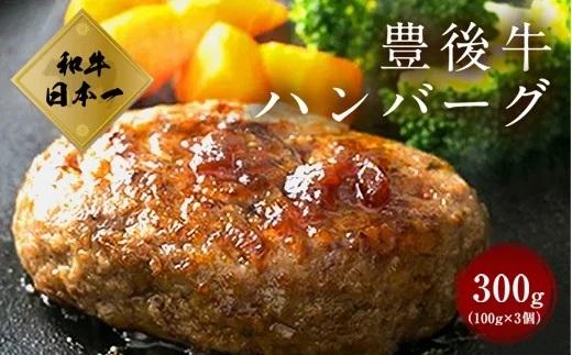 大分県竹田産 豊後牛の ハンバーグ 【100g×3個】