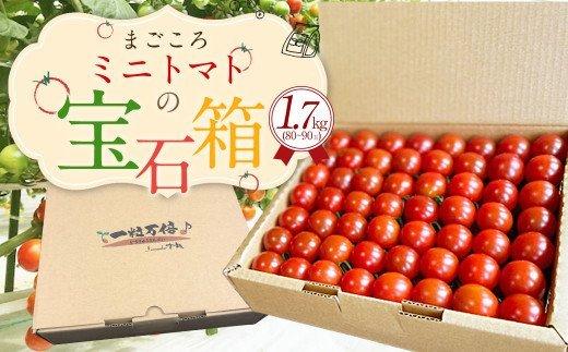 まごころ ミニトマト の 宝石箱 1.7kg (80~90玉) サンチェリーピュア